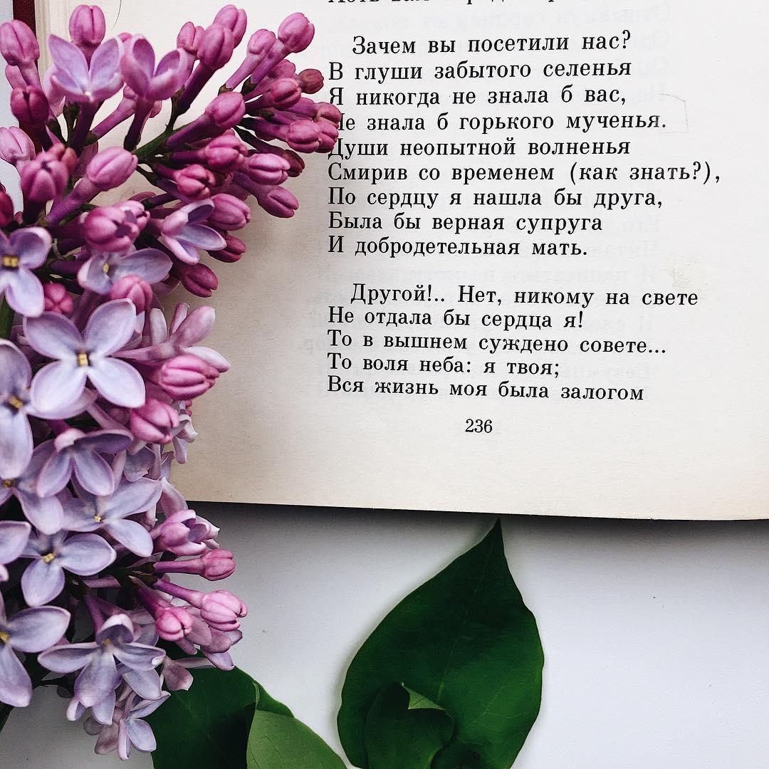 Тарелки с цветком